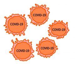 カイム ストーム サイト 新型コロナウイルスとサイトカインストーム|自然免疫応用技研(株)|LPS原料|研究開発|受託解析サービス